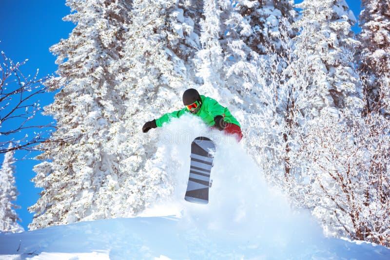 Snowboarding do pó do salto do freeride do Snowboarder imagem de stock