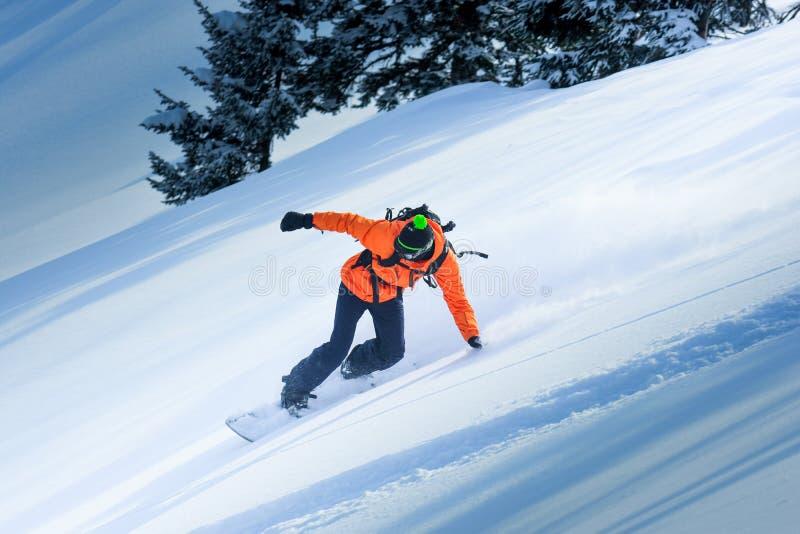 Snowboarding i vintern royaltyfria bilder