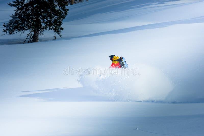 Snowboarding i vintern arkivbild