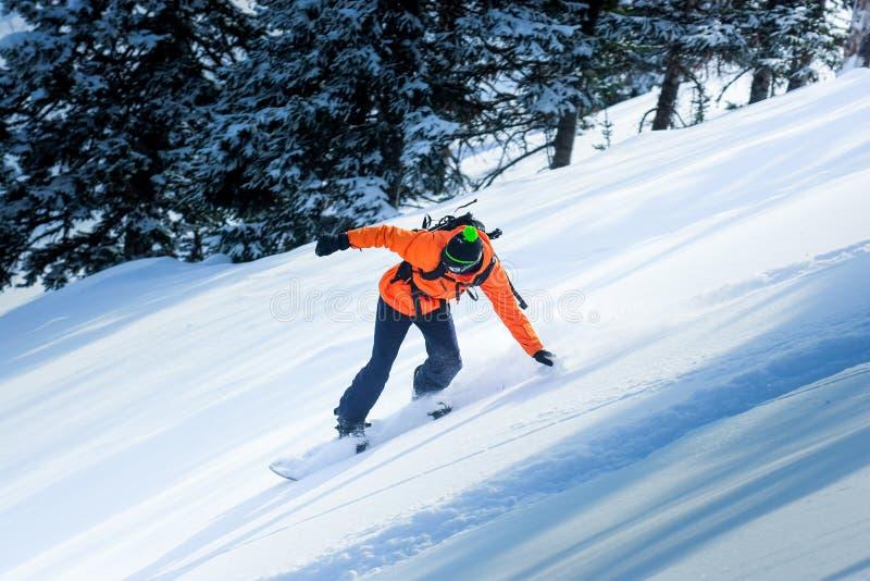Snowboarding i vintern arkivfoton