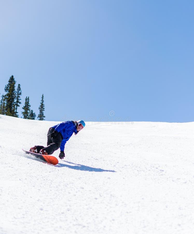 Snowboarding para baixo na luz do sol, Banff fotografia de stock royalty free