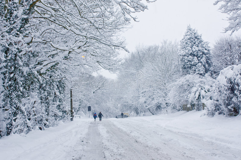 Download Snowbound stock image. Image of drape, ewell, winter, woodland - 8574107