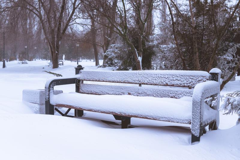 Snowbound bench in the park. royalty free stock photos