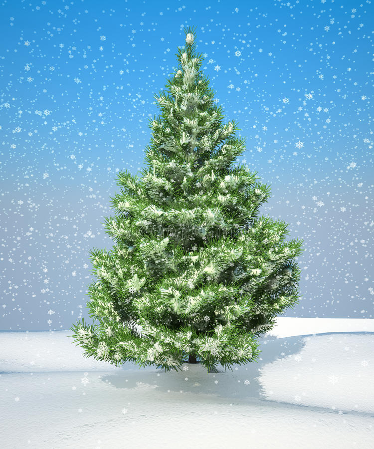 Download Snowbound Christmas Firtree Stock Illustration - Image: 16055630