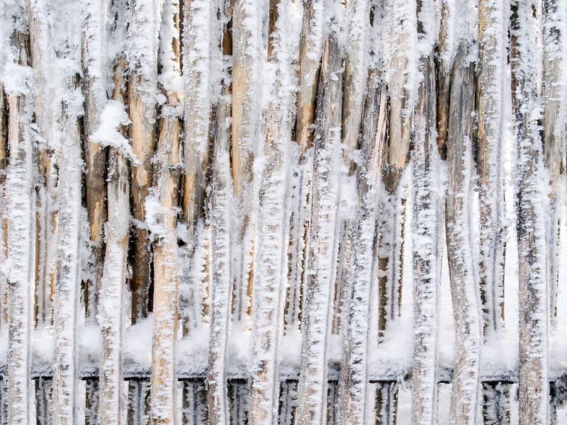 Snowbound Fence. Royalty Free Stock Image