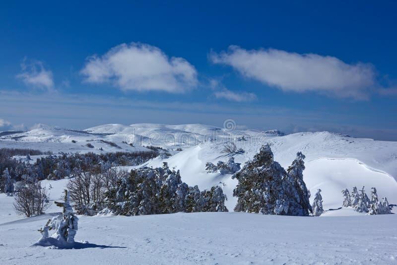 Download Snowbound mountain plateau stock photo. Image of freezing - 23992388