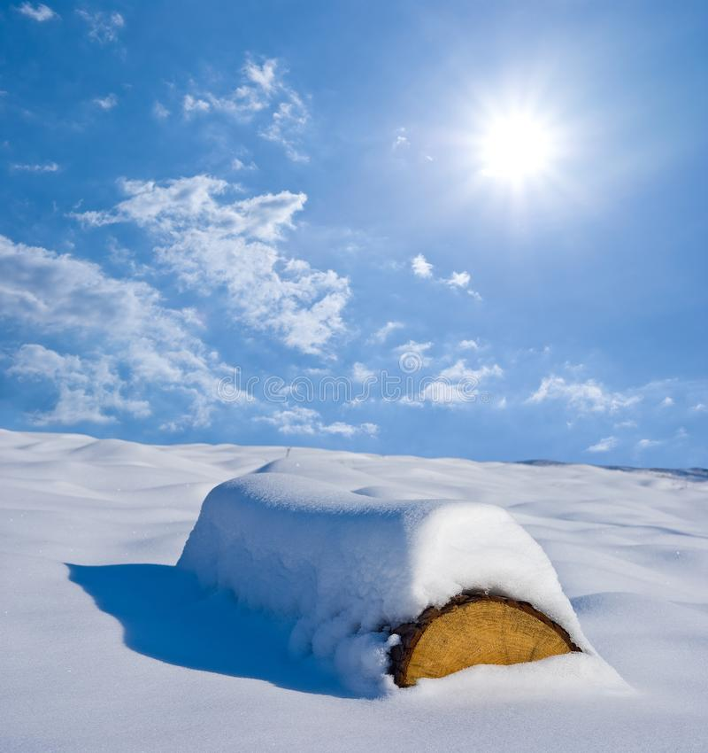 Download Snowbound pine log stock photo. Image of frost, energy - 18135488