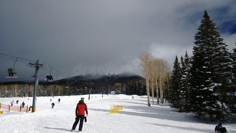 Snowbowl_AZ 免版税库存照片
