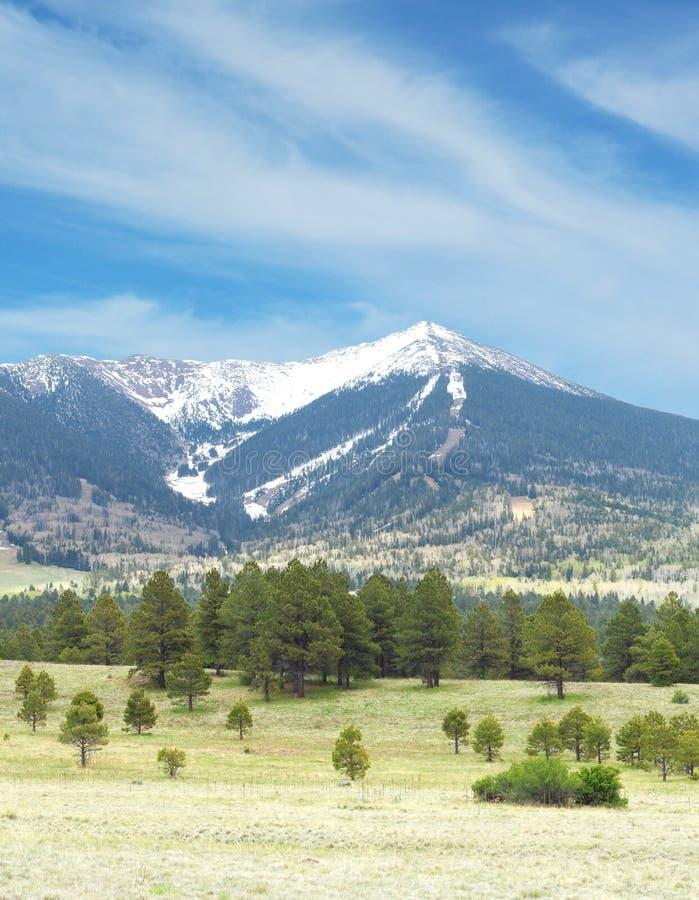 Snowcapped berg royalty-vrije stock afbeelding