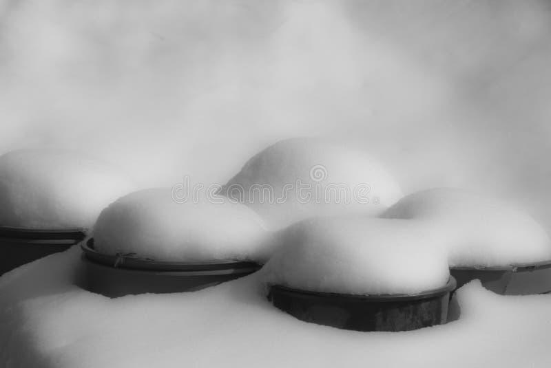 Snowcapped Blumentöpfe In Schwarzweiss Stockfoto - Bild von ...