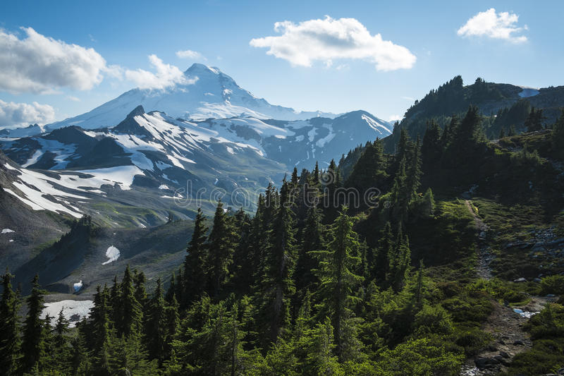 Snowcapped Mount Baker, Ptarmigan Ridge, Washington state Cascades. Ptarmigan Ridge on slopes of snowcapped Mount Baker, Washington state Cascades stock image