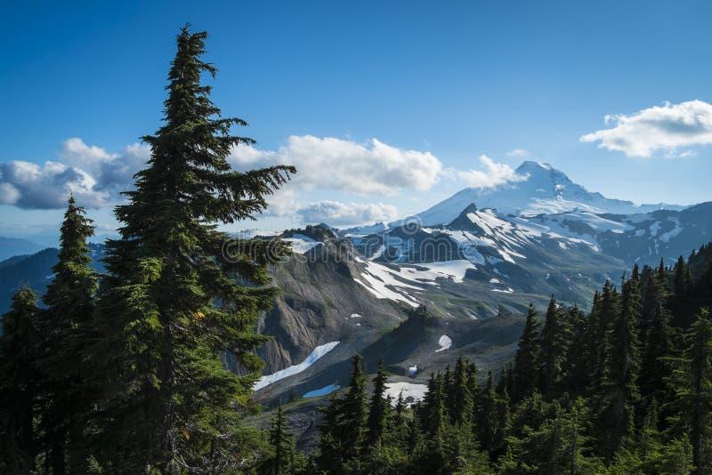 Snowcapped Mount Baker, Ptarmigan Ridge, Washington state Cascades. Ptarmigan Ridge on slopes of snowcapped Mount Baker, Washington state Cascades royalty free stock photo