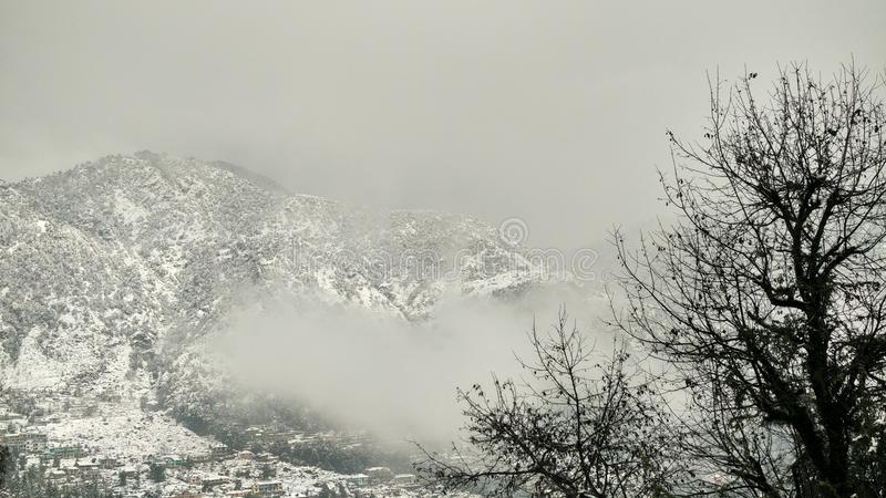 Snowcapped mountain with alpine vegetation / vegetation, cloud and white Snowcapped mountains. Snowcovered mountains . Snowcapped landscapes . Snowfall in hills stock photography