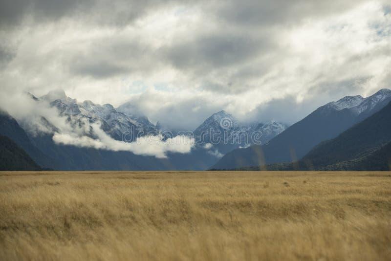 Snowcapped mountain range at Milford sound. Snowcapped mountain range at Milford sound stock photography