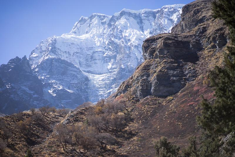 Snowcapped Peak and Forest in the Himalaya mountains, Annapurna region, Nepal stock photos
