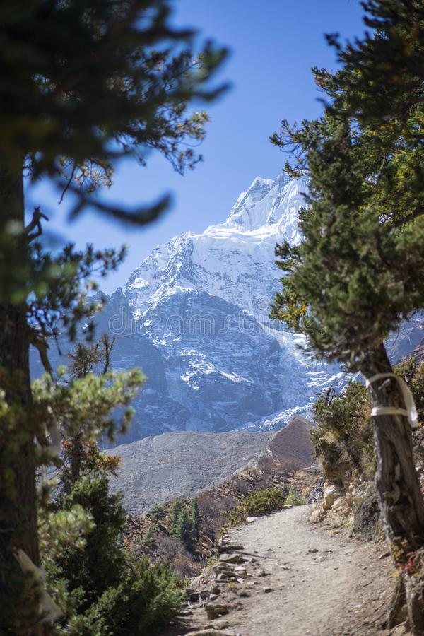 Snowcapped Peak and Forest in the Himalaya mountains, Annapurna region, Nepal royalty free stock images