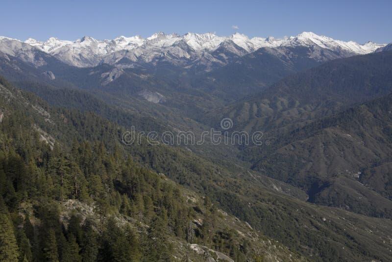 Snowcapped Spitzen im Mammutbaum-Nationalpark stockfoto