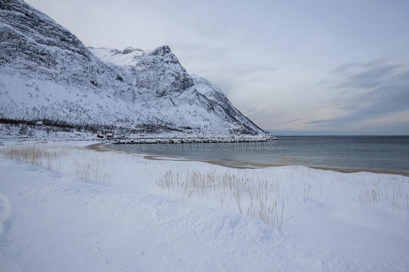 Snowcovered beach. On Ersfjord at Senja Island in Troms county, Norway, Scandinavia royalty free stock image