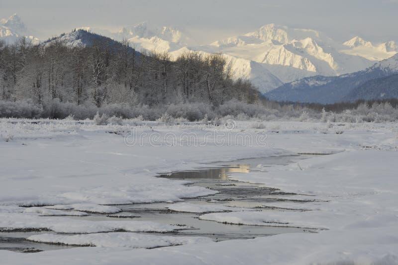 Snowcovered Berge in Alaska. lizenzfreies stockfoto