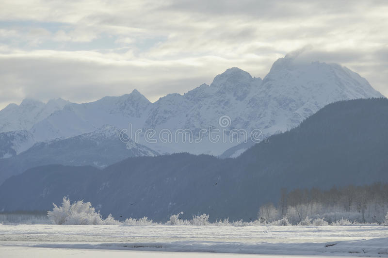 Snowcovered Mountains in Alaska. Chilkat State Park. Mud Bay. HAINES. Alaska. USA royalty free stock photo