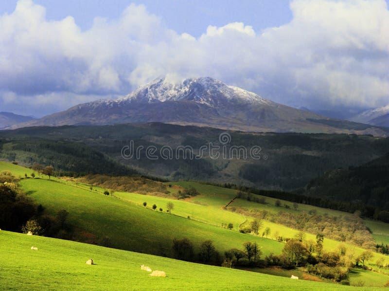 Snowdon photos libres de droits