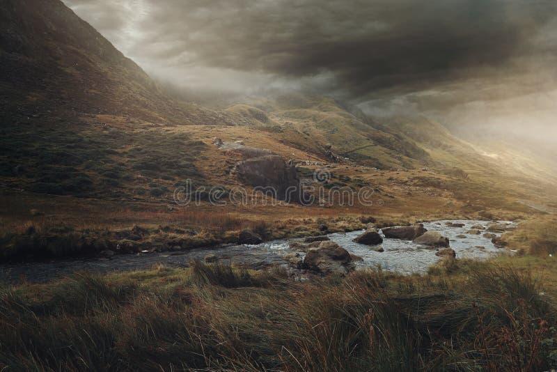 Snowdonia magisk dal royaltyfri bild