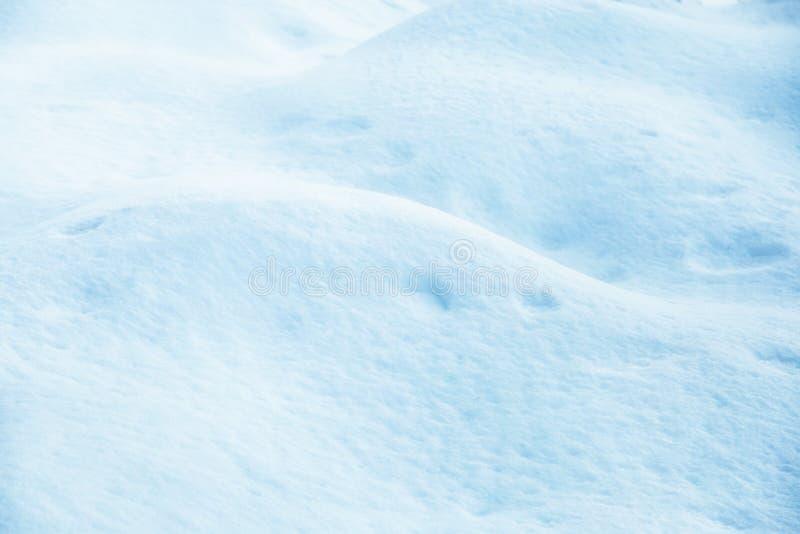 Snowdrift στο δάσος στοκ φωτογραφίες με δικαίωμα ελεύθερης χρήσης