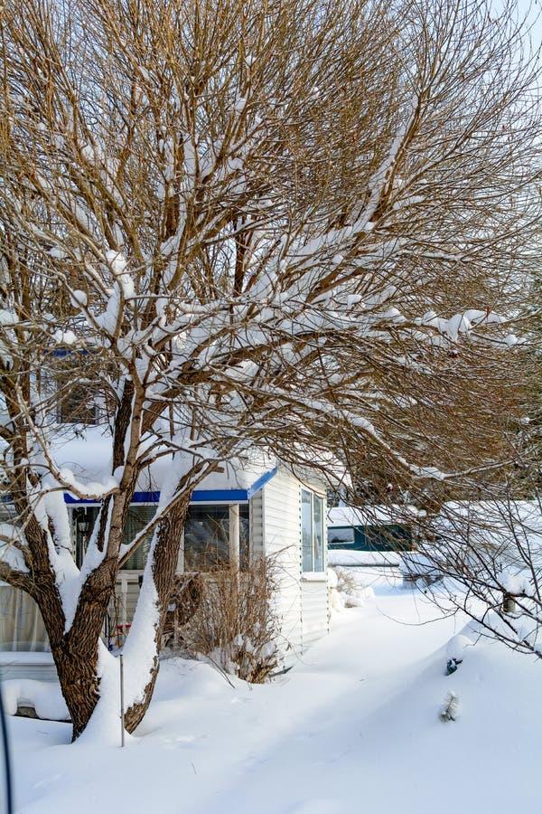 Snowdrift near house royalty free stock photos