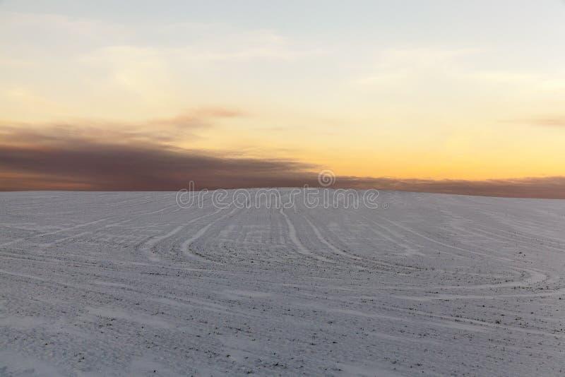 Snowdrifts w zimie fotografia stock