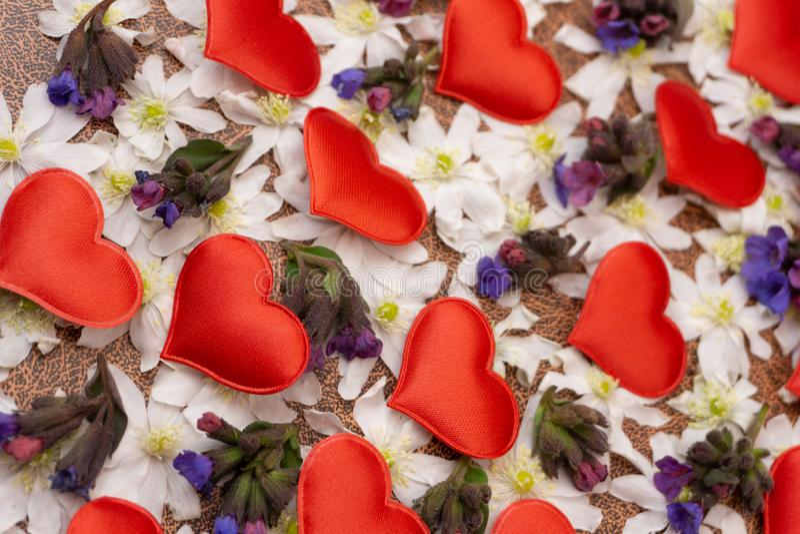 Snowdrop немного цветет сердце на деревянной предпосылке текстуры Белые цветки snowdrop в форме сердца на деревянном столе Первая стоковое фото