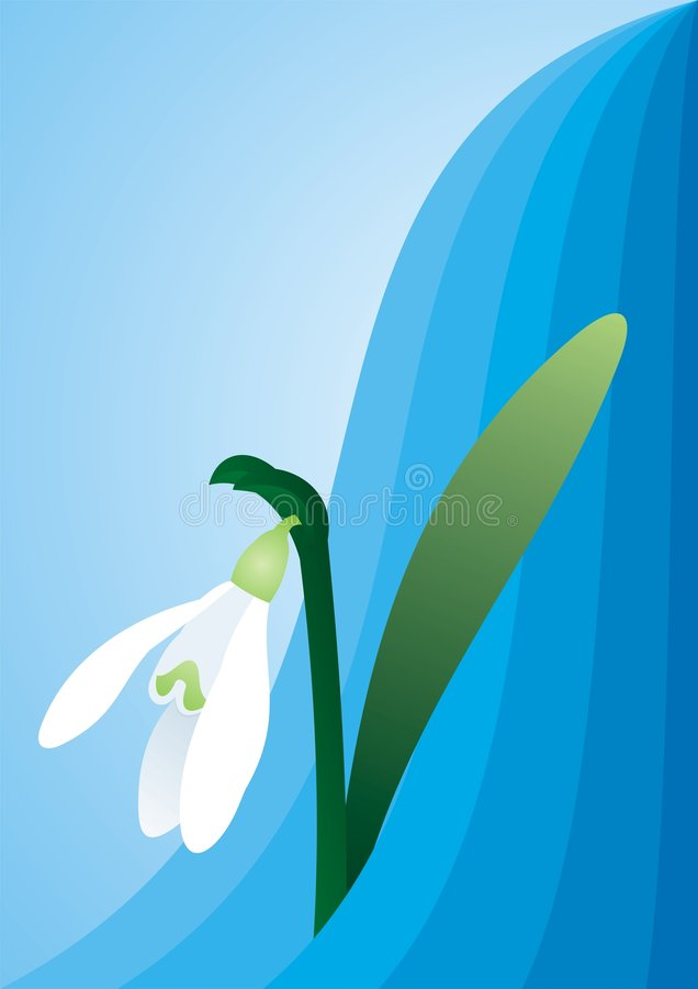 Snowdrop On Blue Background Royalty Free Stock Image