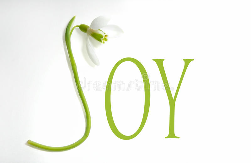Snowdrop and letters - JOY. One snowdrop in the shape of J letter with two other green letters forming the word Joy stock photos