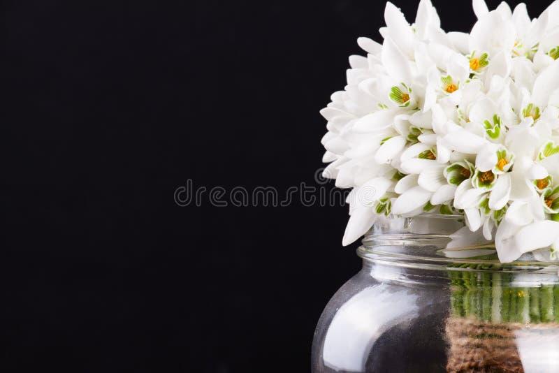 snowdrops花束在花瓶的 库存照片