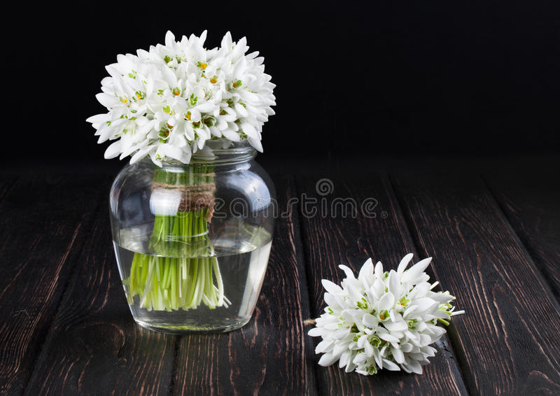 snowdrops花束在花瓶的 免版税库存照片