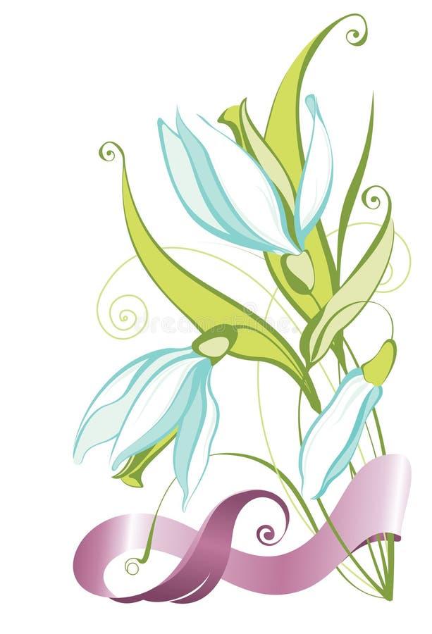 Snowdrops vector illustration