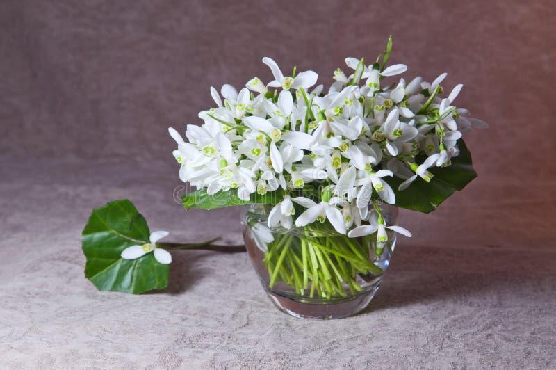 Snowdrops blancs dans un vase en verre image stock