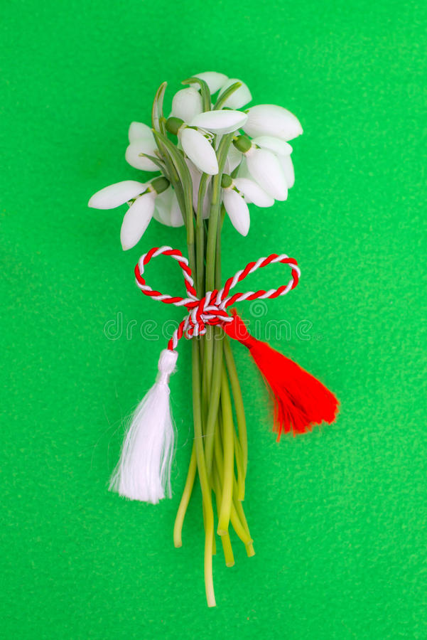 Snowdrops bouquet with spring cord royalty free stock image