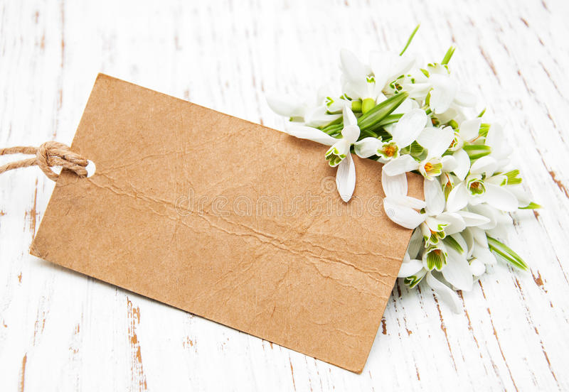 Snowdrops with card. Snowdrops flowers with vintage card on a wooden background royalty free stock photos