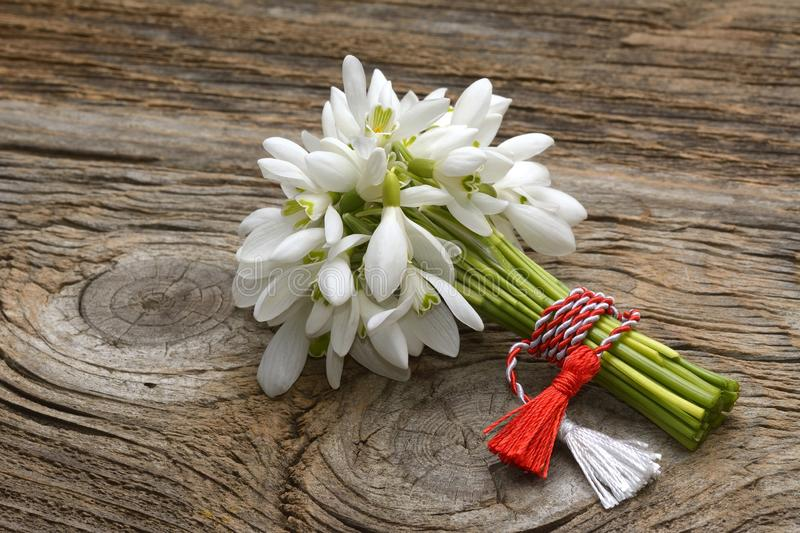 Snowdrops, 1st of March tradition white and red cord martisor isolated on wooden background.  stock image
