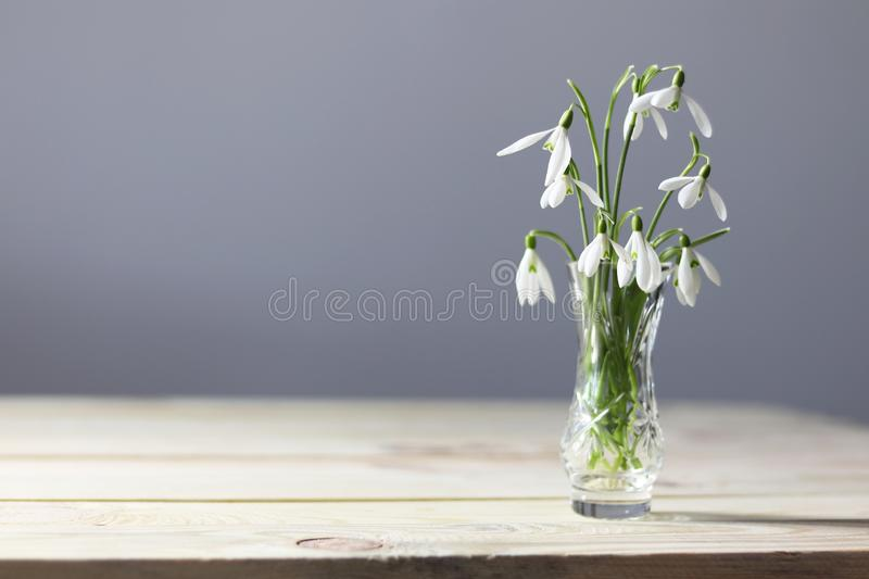 Snowdrops on the table. Spring flowers bouquet. Snowdrops background. Spring flowers on the wooden table. Holiday desk. Holiday fl. Owers. Vase with spring stock photography