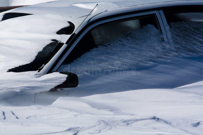 snowed royaltyfri foto