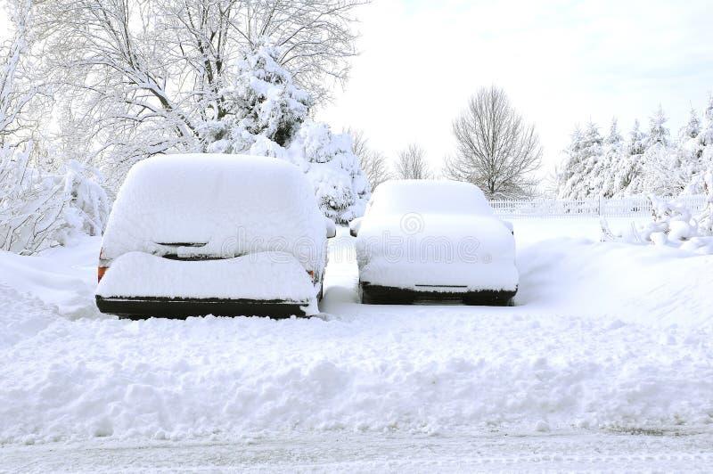 snowed fotografering för bildbyråer