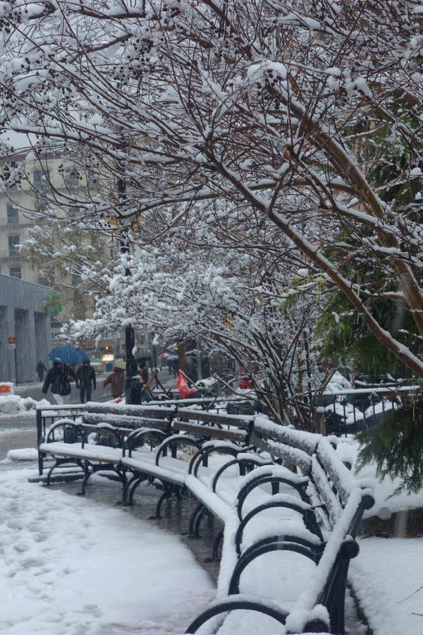 Snowed Benches royalty free stock photos