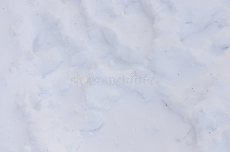 Snowed tekstury t?o zdjęcie royalty free