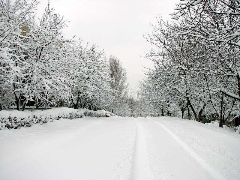 Snowed up road royalty free stock image