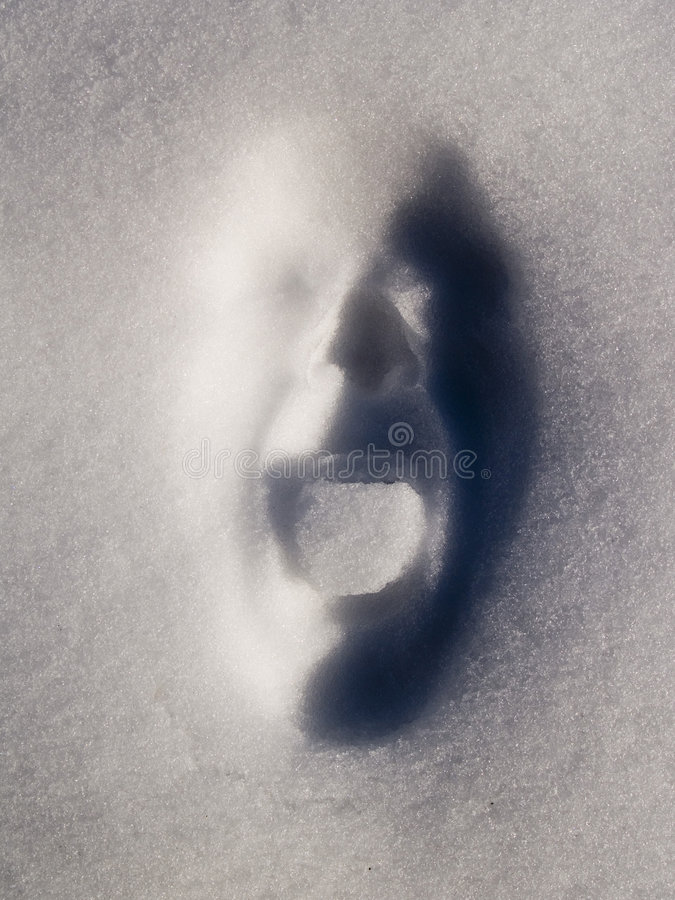 Snowface fotos de stock
