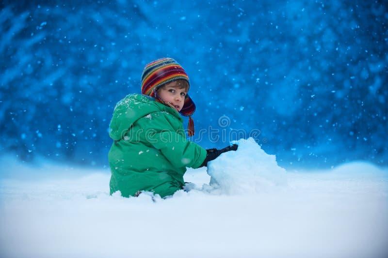 snowfall foto de stock