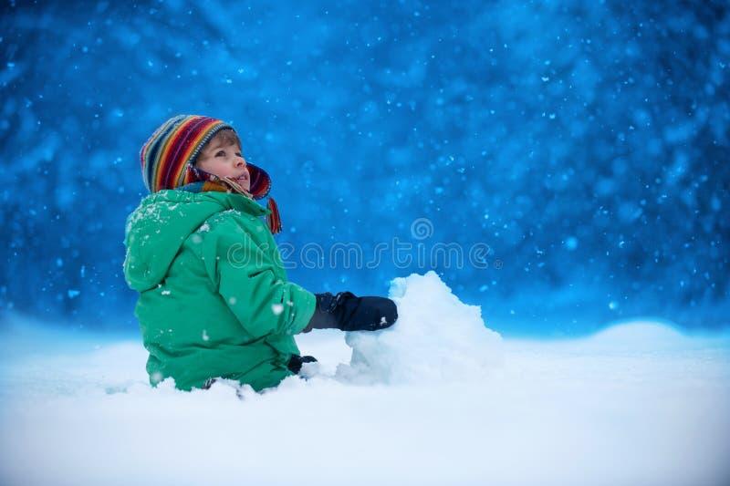 snowfall arkivfoton