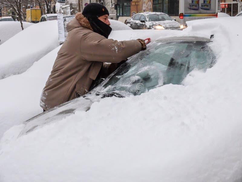 snowfall fotografia de stock royalty free