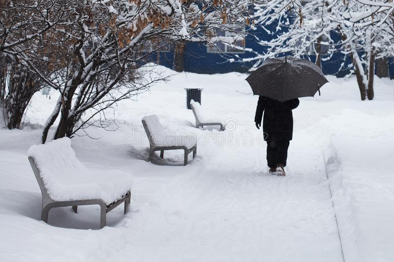 Snowfall bad weather concept. Snow covered benches, woman with an umbrella goes through the winter park. Snowfall bad weather concept. Snow covered benches royalty free stock image